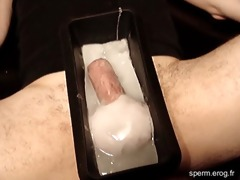 spermboy